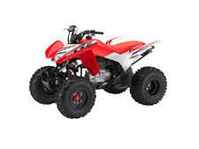 Maybe specialization is fine if you're talking about insects. But in the world of a great all-around sport ATV, versatility is the key to having a good time. You want a machine that can fit a wide range of riders, abilities and terrains. And that ATV is the Honda TRX250X.